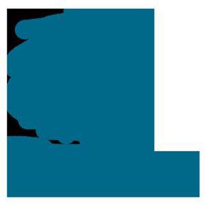 logo-300px-cor